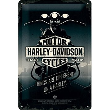 Harley Davidson Plechová cedule - Harley Davidson Things Are Different on a Bike